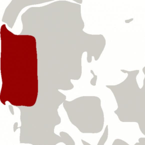 Gruppelogo af sex i vestjylland